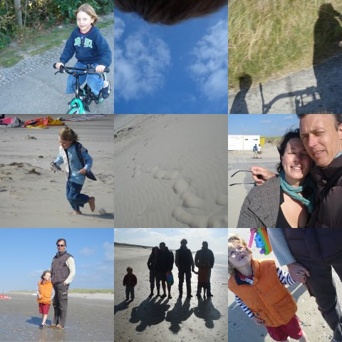 Texel_collage